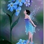 ablueflower