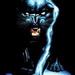 panther99
