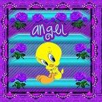 angel1313